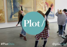 Blogg - Plot/party